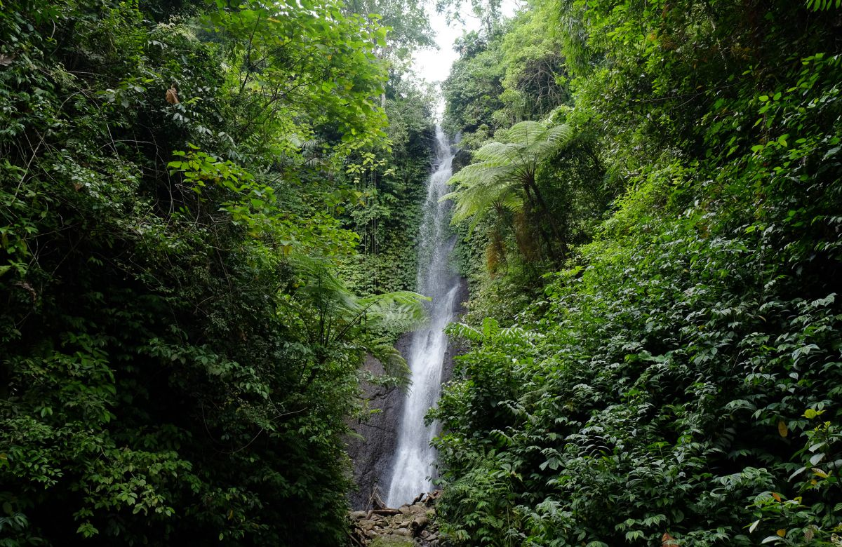 Air Terjun Guripak Waterfall