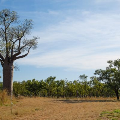 Katherine__timber_creek_NT_oulaoups170509_0033.jpg